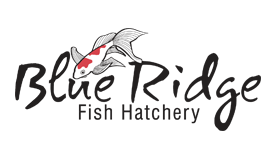 Blue Ridge Fish Hatchery